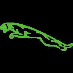 Jaguar Timingset Auto Werkzeuge