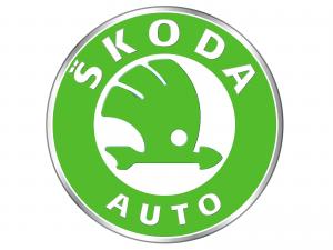 Timingset Skoda Auto Werkzeug